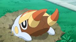grubbin pokemon sun and moon