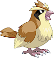 Monster Pidgey