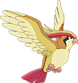 Monster Pidgeot
