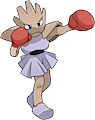 Monster Shiny-Hitmonchan