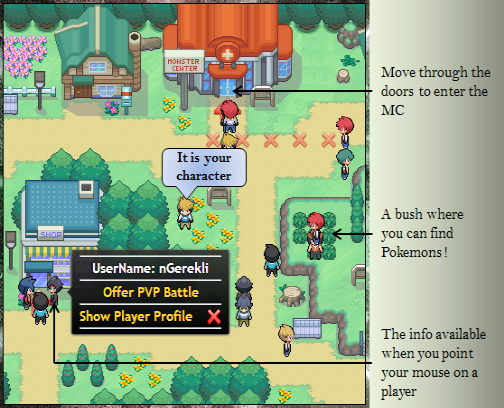 Pokemon Pets: Gameplay Tutorial - How to play PokemonPets