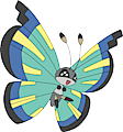 Monster Vivillon-Savanna