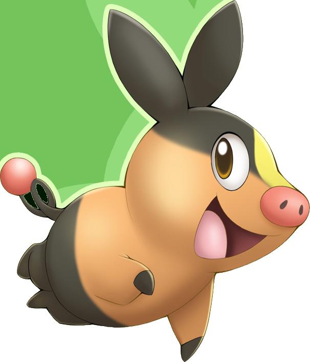 Pokemon 2498 Shiny Tepig Pokedex