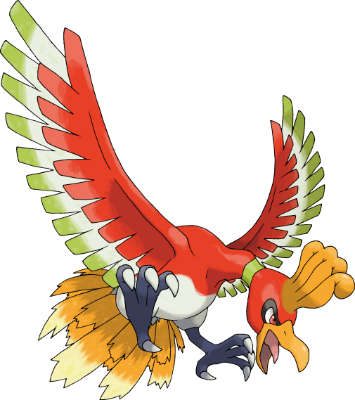 Bird that looks like peacock 10