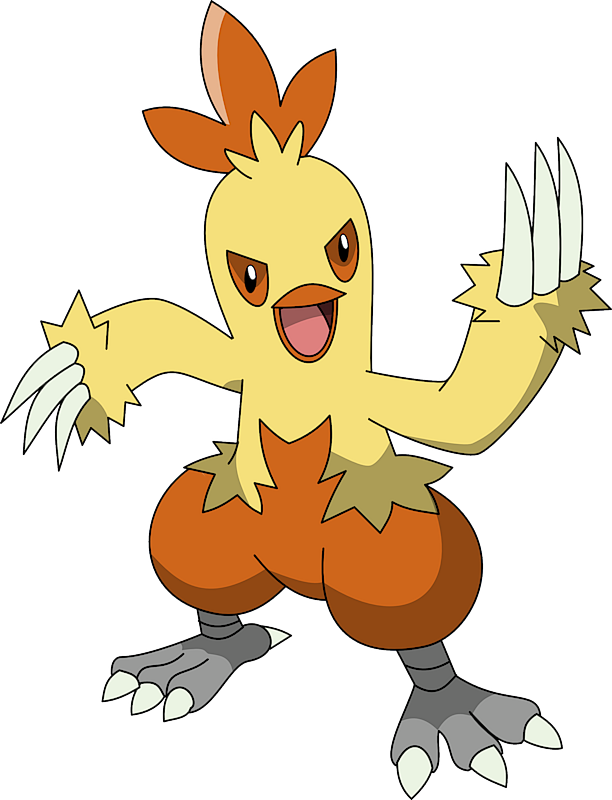 Image result for combusken